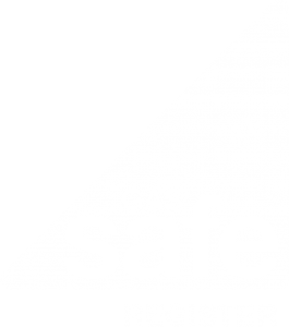 Safe Gas Logo
